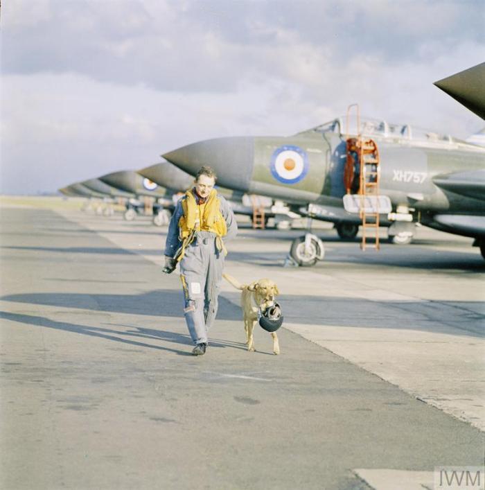 RAF-T 3519